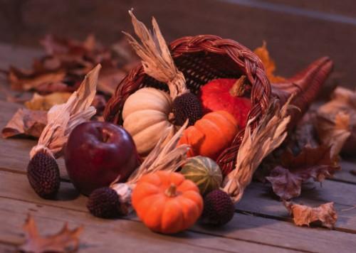 Fawnskin Thanksgiving