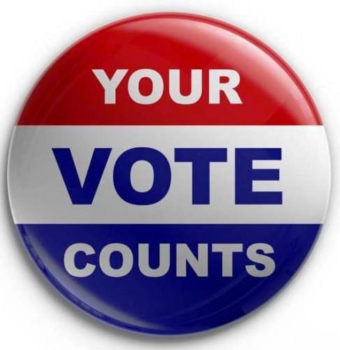 Fawnskin Vote!