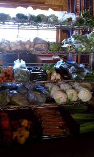 Big Bear Organic Produce Club