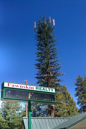 Fawnskin Cell Tower