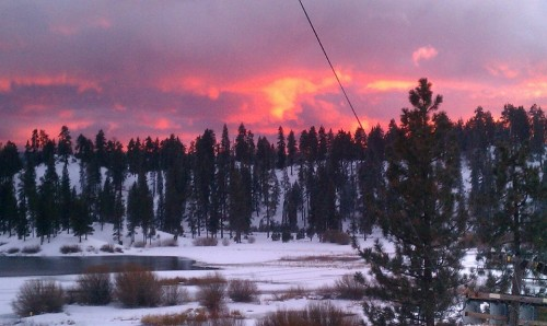 Fawnskin Sky