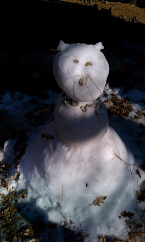 Fawnskin Snow Cat