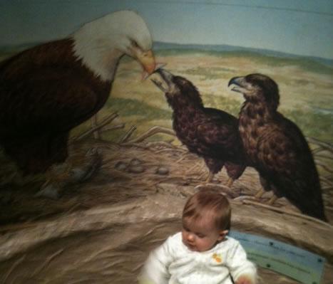 Eagles Nest!